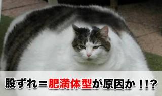 股ずれ,太っている,原因