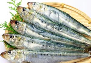 魚嫌い克服の簡単レシピ