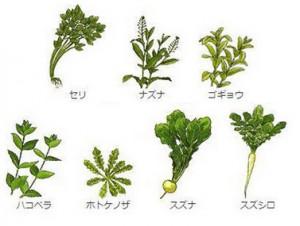 春、七草、種類
