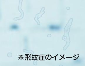飛蚊症、糖尿病網膜症、原因